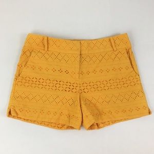 LOFT Ann Taylor Yellow Gold Lace Riviera Shorts